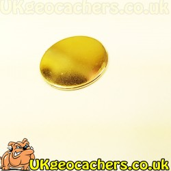 Rare Earth Magnets 20mm x 1mm