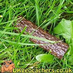 Small Stick Geocache