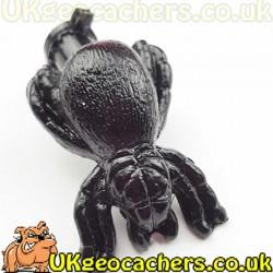 Large Spider Nano Cache