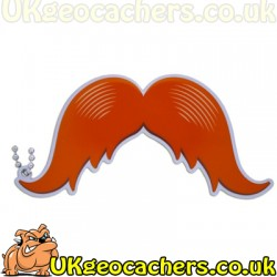 Take a Stachie - orange