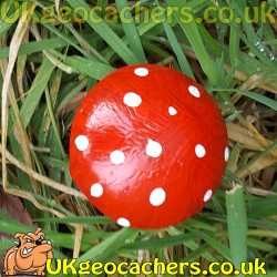 30ml Toadstool Geocache