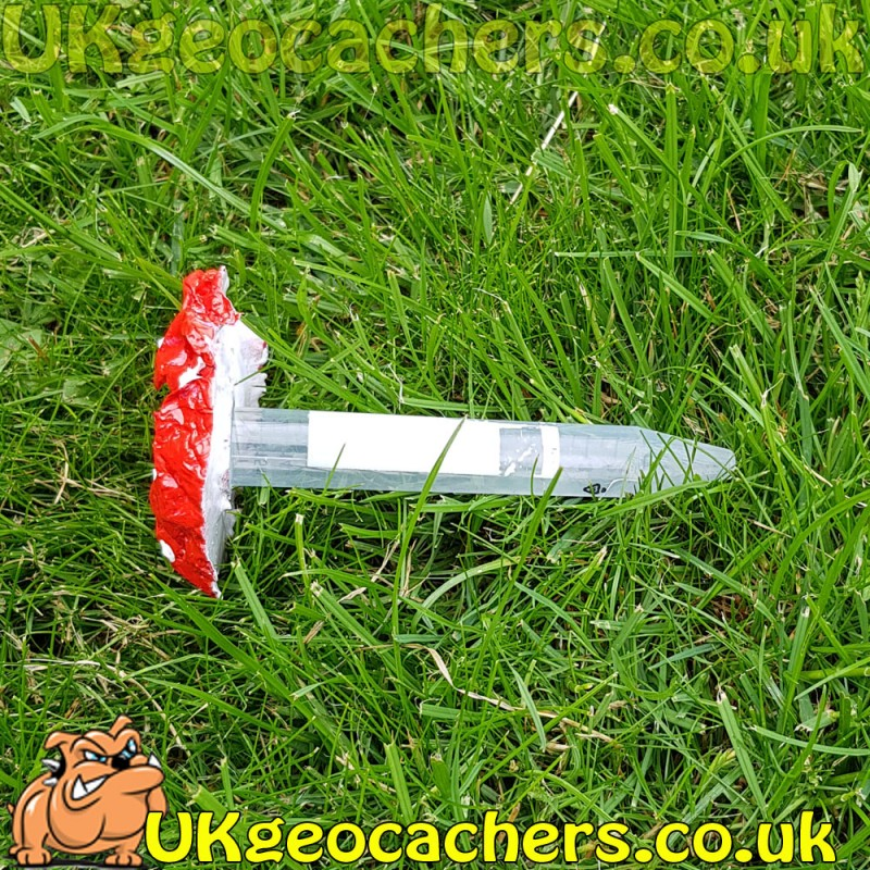 15ml Toadstool Geocache Knobbly For Unique Geocaches