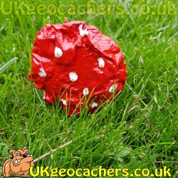 15ml Toadstool Geocache - Knobbly