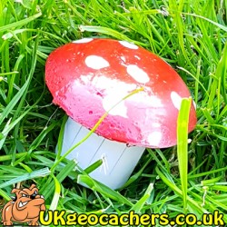 20ml Toadstool Geocache