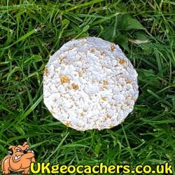 30ml Mushroom Geocache