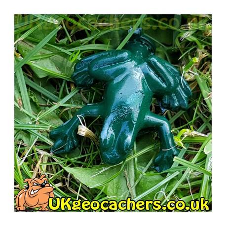 Frog Ready Made Nano Cache