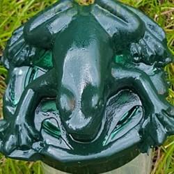 20ml Micro Frog Geocache