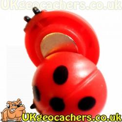 Magnetic Ladybird