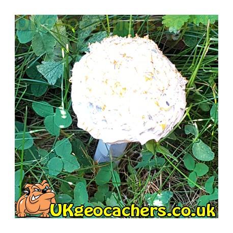 Mushroom Geocache